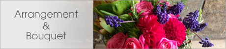 Arrangement & Bouquet